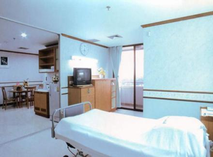 Patient's Room - Suite Room - Yanhee Hospital - مستشفى يانهي
